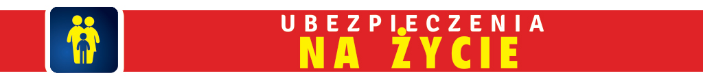 http://www.ubezpieczenia-nasielsk.pl/wp-content/uploads/2015/02/5-1024x120.jpg